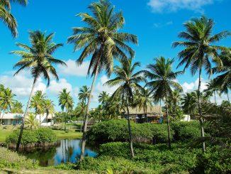Les principales raisons de choisir le Brésil comme destination de vacances