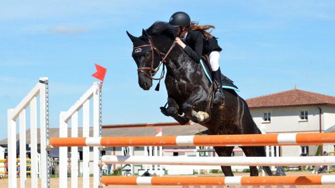 Équitation : bien choisir son équipement d'équitation