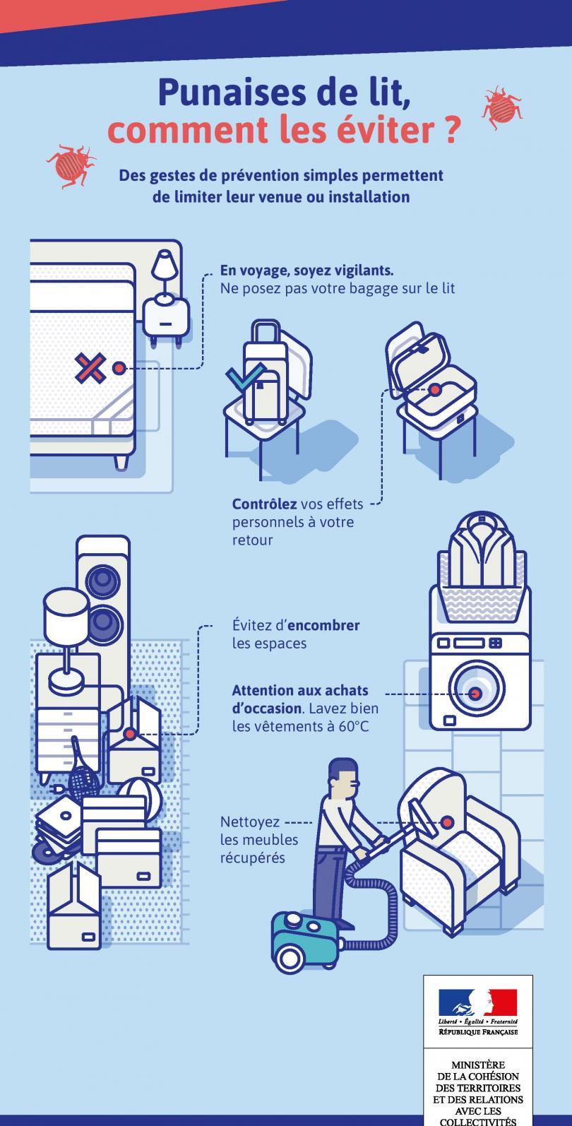 Infographie expliquant comment se prémunir et se débarrasser des punaises de lit