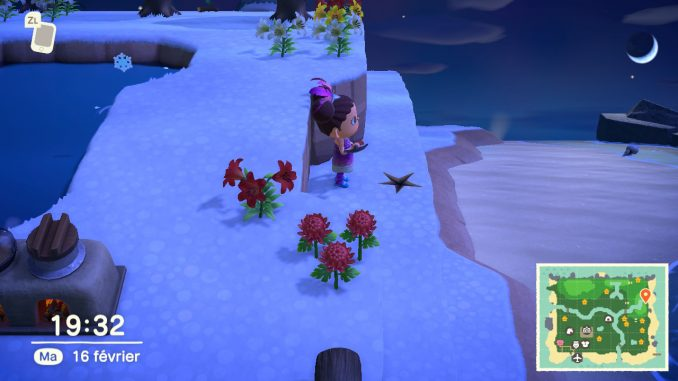 Un fossile se situe à l'emplacement de l'étoile. Creusez ici pour gagner des clochettes dans Animal Crossing