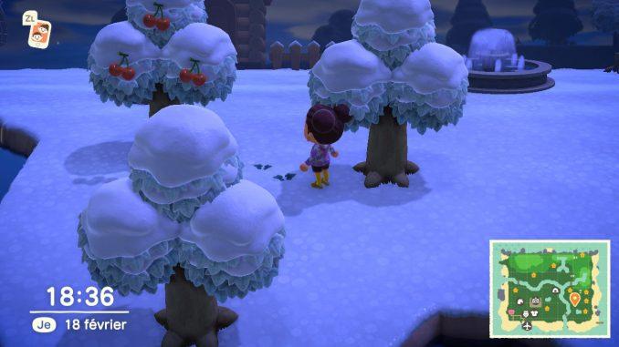 Ramasser des mauvaises herbes dans Animal Crossing New Horizons pour espérer être riche un jour dans le jeu