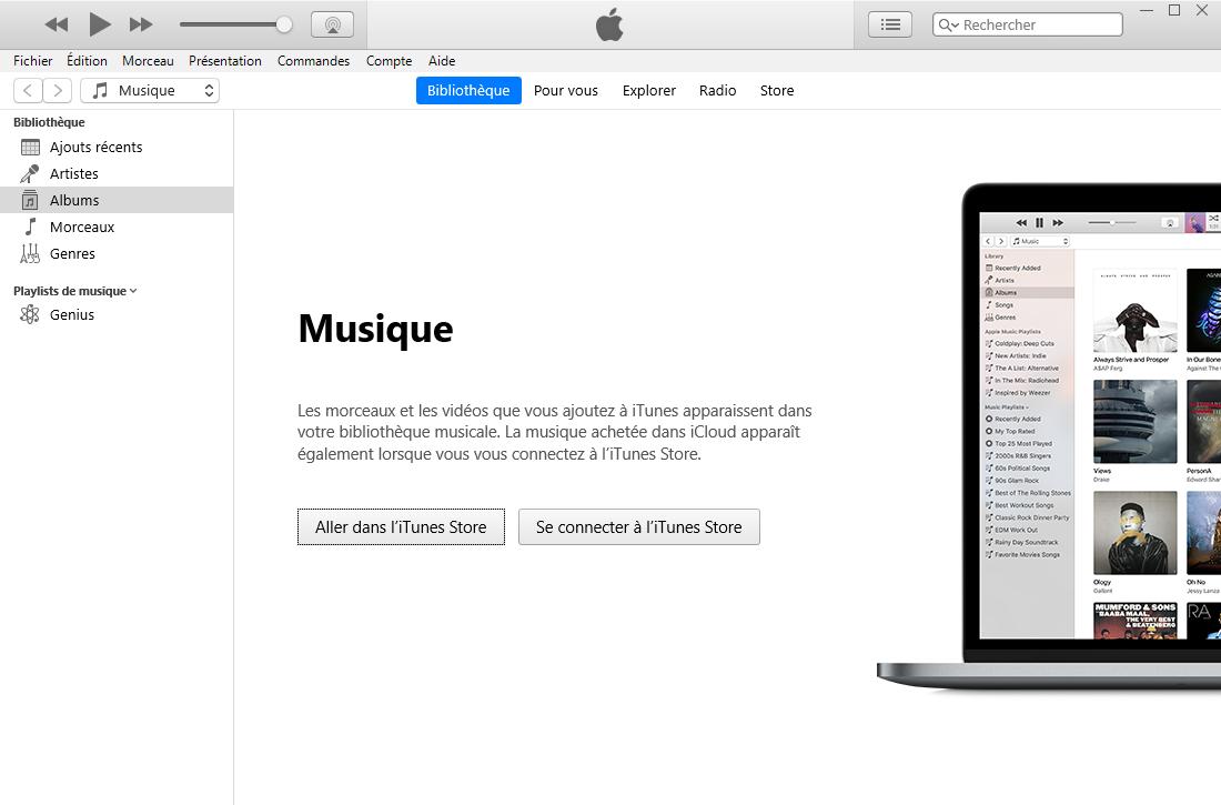 iTunes : bibliothèque Musique