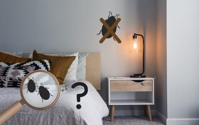 Prendre ses précautions avec les punaises de lit pour éviter que ses vêtements achetés sur Vinted soient infestés de punaises de lit