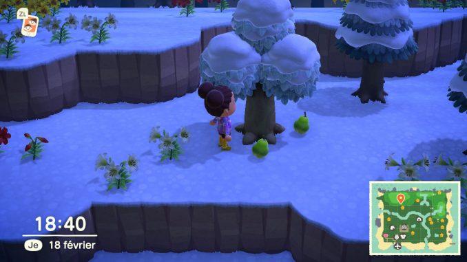 Animal Crossing : ramasser des fruits que vous pourrez ensuite vendre
